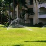 Sprinkler Irrigation System Hotel